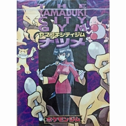 The Yamabuki City Gym Card Game